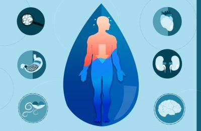 A diagram showing where dehydration can effect you